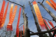 Traditionele vlaggen royalty-vrije stock afbeelding