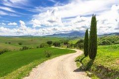 Traditionele witte landweg in Toscanië Stock Afbeeldingen