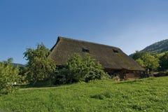 Traditionele Zwarte Bosboerderij Royalty-vrije Stock Fotografie