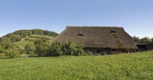 Traditionele Zwarte Bosboerderij Stock Foto
