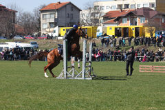 Theodores dag (hästpåsken) Royaltyfria Foton