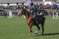 Theodores dag (hästpåsken) Royaltyfri Foto