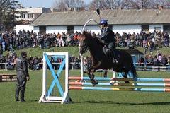 Theodores dag (hästpåsken) Fotografering för Bildbyråer