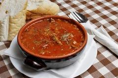 Traditionell Balkan soppa med bröd Royaltyfria Bilder