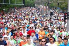 Traditionell Belgrade maraton royaltyfri fotografi