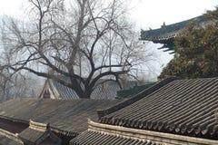 Traditionell byggnad på den Shaolin templet Royaltyfri Bild