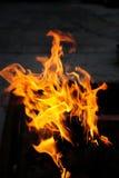traditionell campfire Royaltyfri Fotografi