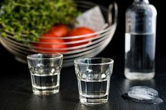 Traditionell drink Ouzo eller Raki royaltyfria foton