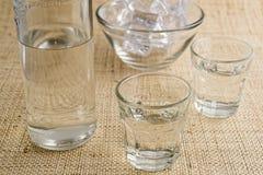 Traditionell drink Ouzo eller Raki royaltyfri foto