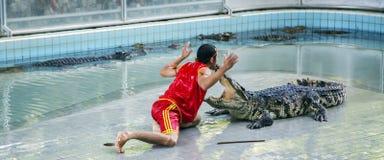 Traditionell für Thailand-Show von Krokodilen Lizenzfreie Stockbilder