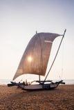Traditionell fiskebåt på den Negombo stranden, Sri Lanka på solnedgång w royaltyfria foton
