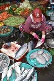 Traditionell fiskmarknad i Hoi An, Vietnam, Asien arkivbild