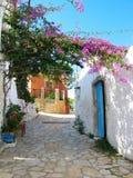 Traditionell gata med den ljusa bougainvillean i Grekland, Korfu Royaltyfria Bilder