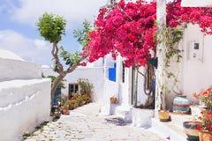 Traditionell grekisk gata med blommor i den Amorgos ön, Grekland arkivfoto
