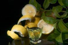 Traditionell hemlagad citronlikörlimoncello och nya citroner på den svarta backgounden royaltyfri bild