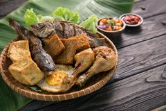 Traditionell indonesisk mat med sambal Royaltyfria Foton