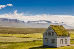 Traditionell isländsk byggnad - Glaumbar lantgård. Arkivbilder
