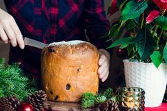 Traditionell italiensk kaka för Panettone för jul fotografering för bildbyråer