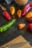 traditionell italiensk pizza f?r kokkonstmatingredienser fotografering för bildbyråer
