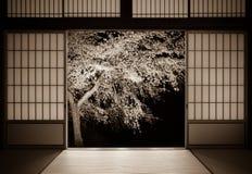 Traditionell japansk bakgrund av rispapperdörrar och ett körsbärsrött träd med ett åldrigt foto ser arkivfoto