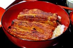 Traditionell japansk mat som är uppknäppt, unagi med kokta ris Royaltyfria Bilder