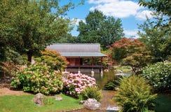 Traditionell japanträdgård i sommar Arkivfoto