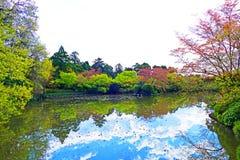 Traditionell japanträdgård på den Ryoanji templet i Kyoto, Japan arkivfoton
