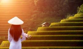 Traditionell klänning för vietnamesAo Dai av Vietnam och risfältet på royaltyfria bilder