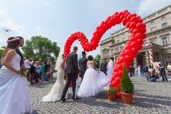 Traditionell kollektiv bröllopceremoni i Belgrade 2 Arkivfoton