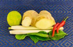 Traditionell kryddig kryddig soppa för ingrediensvolymsötpotatis Arkivbild