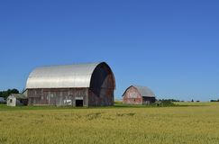 Traditionell ladugård och jordbruksmark Arkivbilder