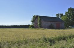 Traditionell ladugård och jordbruksmark Fotografering för Bildbyråer