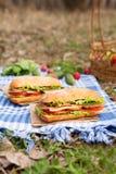 Traditionell lunch för picknick för livsstil för ciabattabagettsmörgås med grönsaker royaltyfri bild