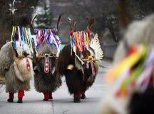 Traditionell mardigrasdräkt från Slovenien Europa: kurent royaltyfri fotografi