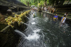 Traditionell pöl i Bali Royaltyfria Bilder