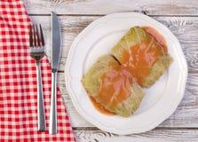 Traditionell polsk maträtt - golabki Royaltyfri Fotografi