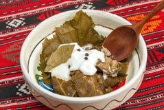 Traditionell romanian och balkanic maträttköttfärs som sloggs in i vinrankablad, tjänade som med kräm i en lerabunke Royaltyfria Foton