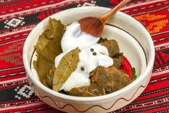 Traditionell romanian och balkanic maträttköttfärs som sloggs in i vinrankablad, tjänade som med kräm i en lerabunke Royaltyfri Foto