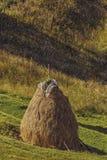 Traditionell rumänsk höstack Arkivbild
