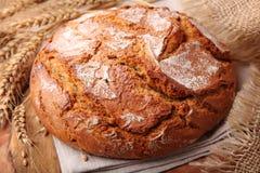 traditionell rund rye för bröd arkivbild
