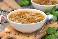 Traditionell rysk kålsoppa (shchi) med lösa champinjoner Royaltyfria Foton