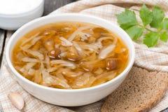 Traditionell rysk kålsoppa (shchi) med lösa champinjoner Royaltyfri Bild