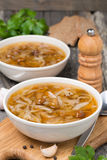 Traditionell rysk kålsoppa (shchi) med lösa champinjoner Arkivbild