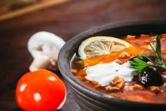Traditionell rysk soppa solyanka Fotografering för Bildbyråer
