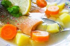 Traditionell ryssfisksoppa Arkivbilder