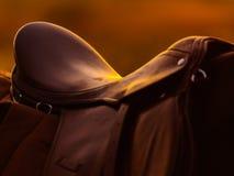 Traditionell sadel på en hästrygg i solnedgång Arkivbild