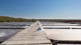 Traditionell salt extraktionfältsaltdam royaltyfria bilder