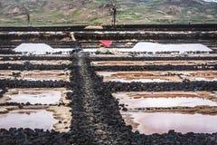 Traditionell salt produktion på Lanzarote Royaltyfri Bild