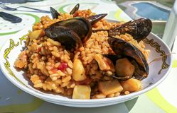 Traditionell spansk havs- paella Royaltyfri Foto