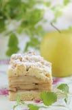 traditionell szarlotka för äpplepiepolermedel arkivbilder
